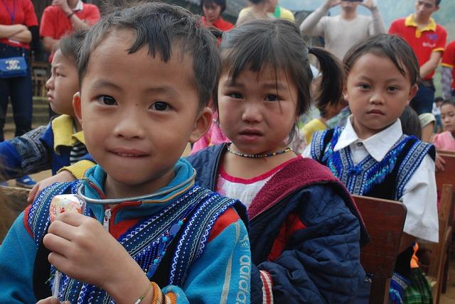 התנדבות בווייטנאם